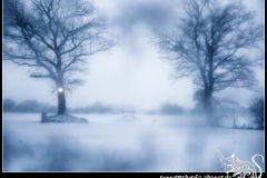 2018-02-25_wacken_winter_nights-002