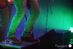 The-O'Reilly-and-the-Paddyhats_Fulda_04.10 (15)