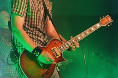 The-O'Reilly-and-the-Paddyhats_Fulda_04.10 (16)