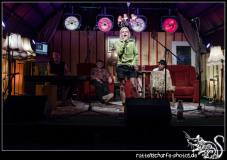 2018-08-16_walter_stehlings_liedermachershow-059