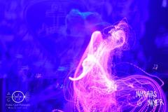 Lightshow_09_COR_0596
