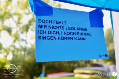Fish-Freunde-Treffen-12-Kirchscheidungen-18.19.08.2017_DSC_0004
